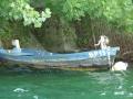 Barque de type Rhodanien, amarrée au bord du lac